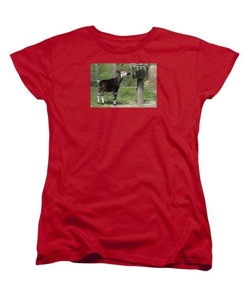 Okapi Women's T-Shirt (Standard Cut)