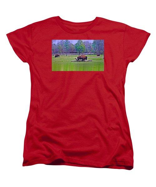 One Bison Family Women's T-Shirt (Standard Cut) by Miroslava Jurcik