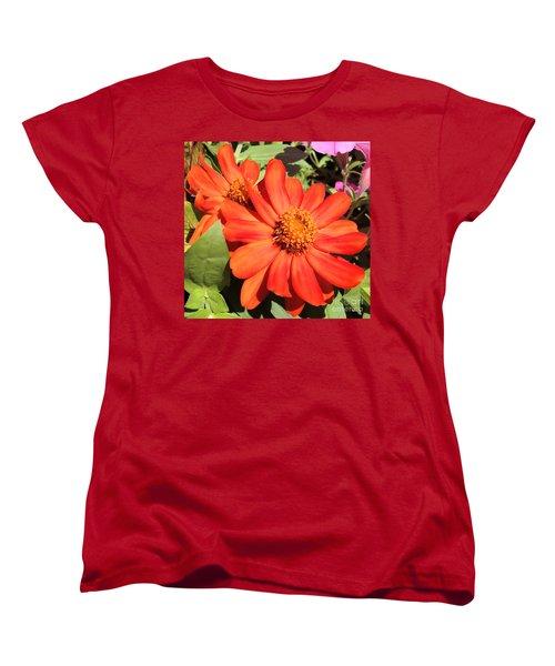 Orange Daisy In Summer Women's T-Shirt (Standard Cut) by Luther Fine Art