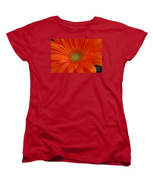 Orange Gerber Daisy Women's T-Shirt (Standard Cut) by Patrick Shupert