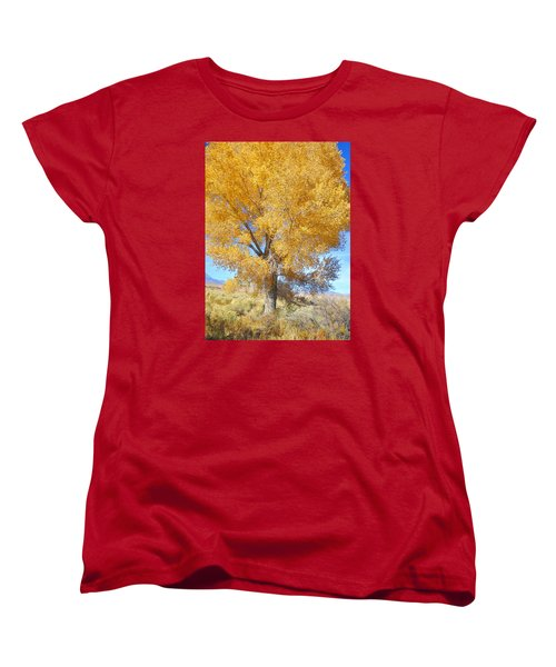 Women's T-Shirt (Standard Cut) featuring the photograph Orange Serenade by Marilyn Diaz