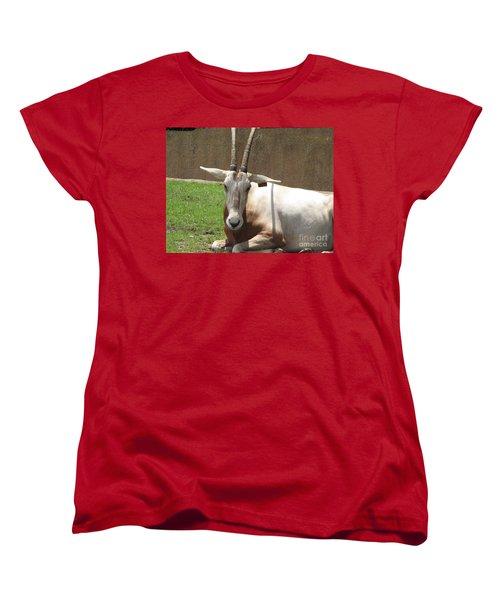 Oryx Women's T-Shirt (Standard Cut) by DejaVu Designs
