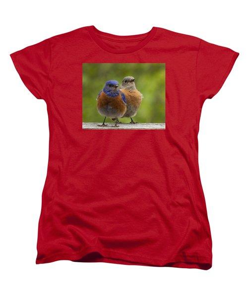 Pals Women's T-Shirt (Standard Cut) by Jean Noren