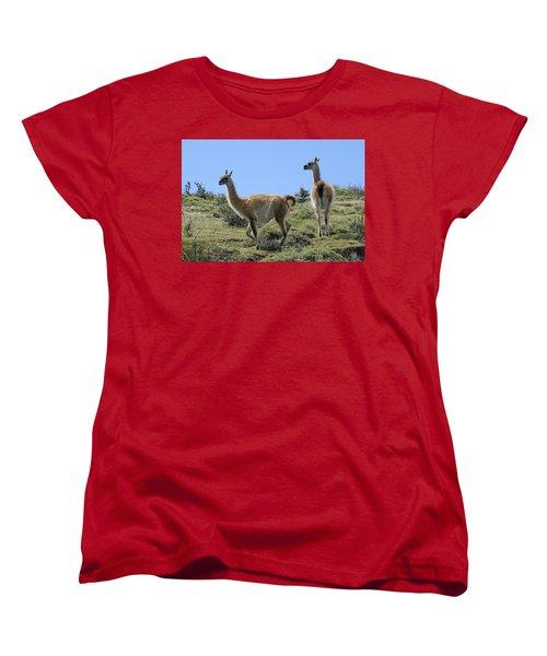 Patagonian Guanacos Women's T-Shirt (Standard Cut) by Michele Burgess
