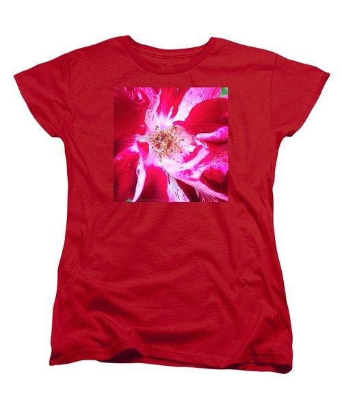 Peppermint Swirls Women's T-Shirt (Standard Cut) by Anna Porter