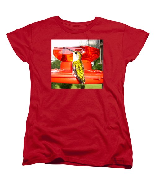 Women's T-Shirt (Standard Cut) featuring the photograph Perfect Pose by Nick Kirby