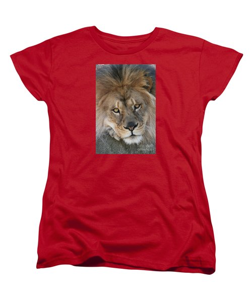 Pet Me Women's T-Shirt (Standard Cut) by Judy Whitton
