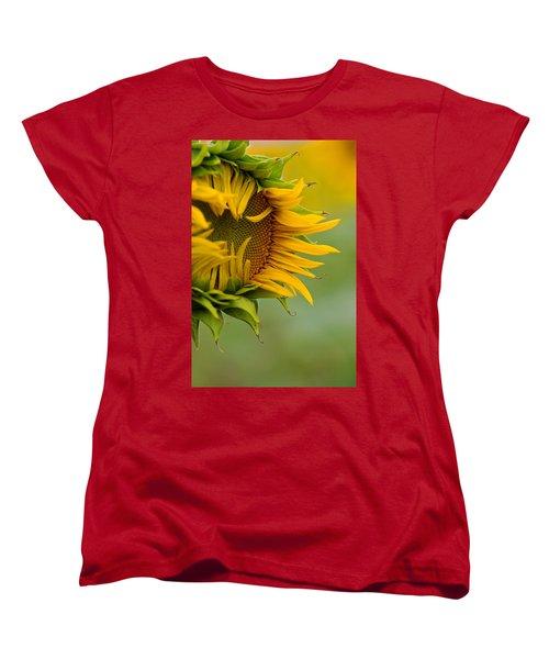 Women's T-Shirt (Standard Cut) featuring the photograph Petals by Ronda Kimbrow