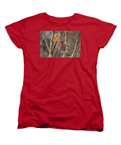 Women's T-Shirt (Standard Cut) featuring the photograph Pine Grosbeak by David Porteus