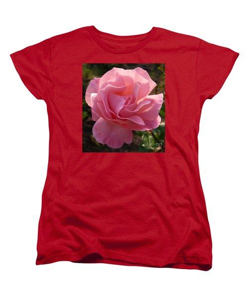 Women's T-Shirt (Standard Cut) featuring the photograph Pink Rose by Phil Banks