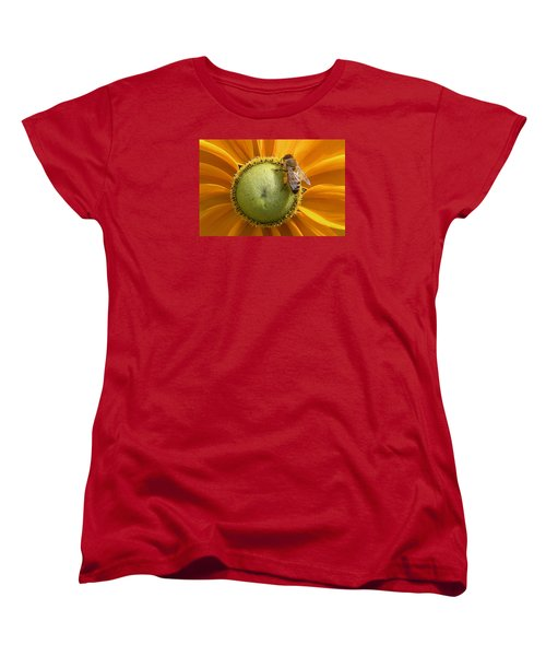 Pollen Time Women's T-Shirt (Standard Cut) by Brian Chase