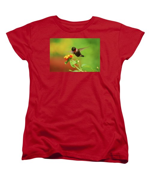 Pretty As A Picture Women's T-Shirt (Standard Cut) by Lori Tambakis