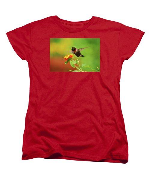 Pretty As A Picture Women's T-Shirt (Standard Cut)