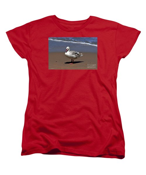 Women's T-Shirt (Standard Cut) featuring the photograph Pretty Goose Posing On Monterey Beach by Susan Wiedmann