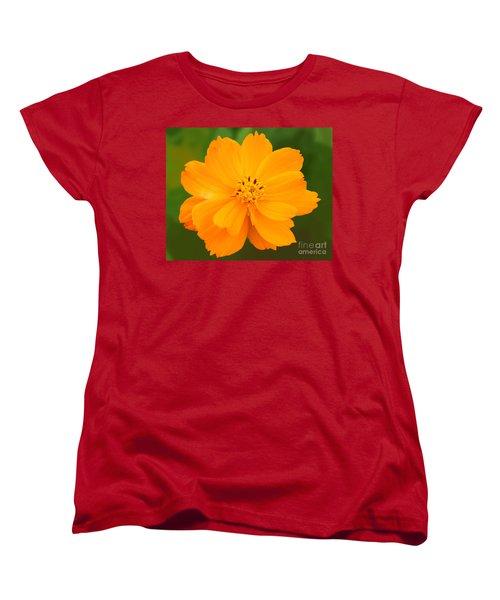 Women's T-Shirt (Standard Cut) featuring the photograph Pretty In Orange by Mariarosa Rockefeller