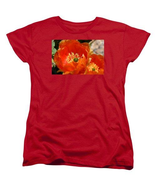 Prickly Pear In Bloom Women's T-Shirt (Standard Cut) by Joe Kozlowski