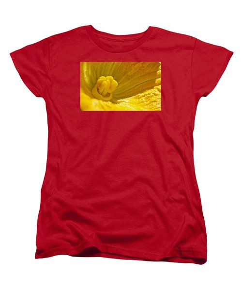Pumpkin Blossom Women's T-Shirt (Standard Cut) by Linda Bianic