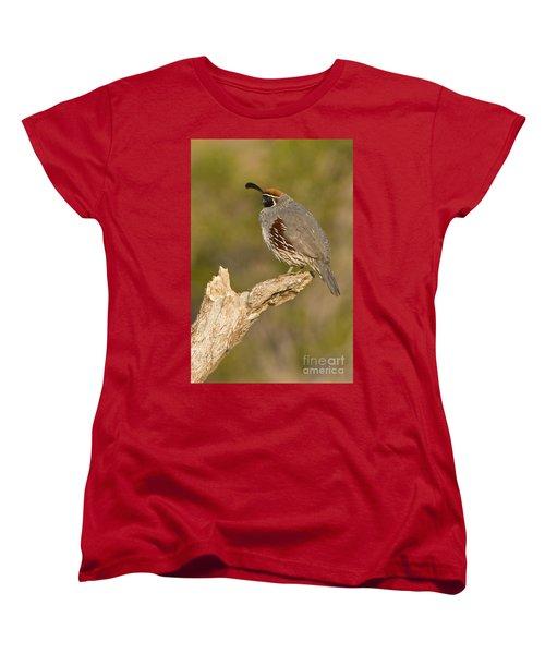 Women's T-Shirt (Standard Cut) featuring the photograph Quail On A Stick by Bryan Keil