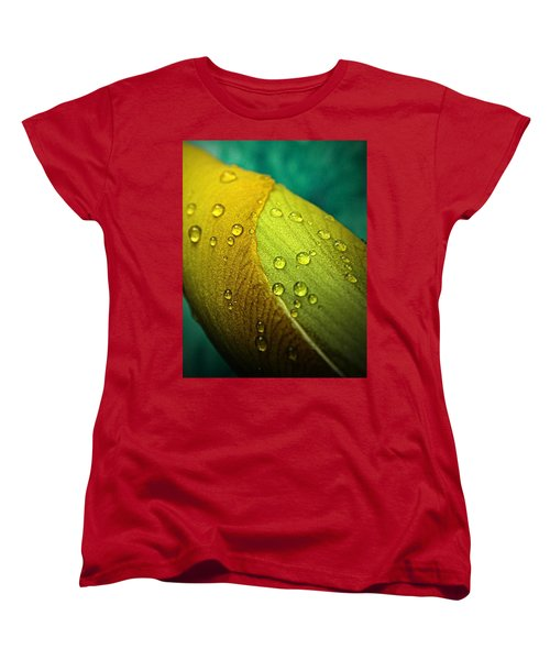 Rain Wrapped Women's T-Shirt (Standard Cut)
