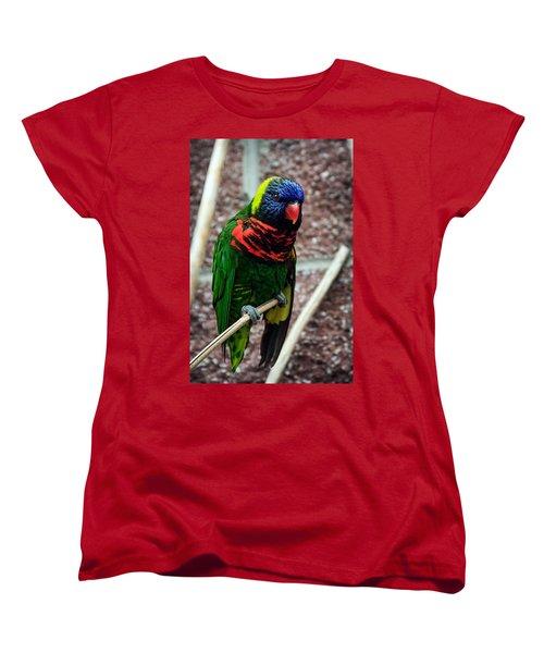 Women's T-Shirt (Standard Cut) featuring the photograph Rainbow Lory Too by Sennie Pierson