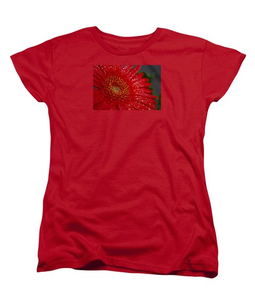 Red Gerber In The Rain Women's T-Shirt (Standard Cut) by Shelly Gunderson