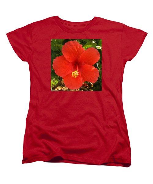 Red Pansy Women's T-Shirt (Standard Cut) by Mustafa Abdullah