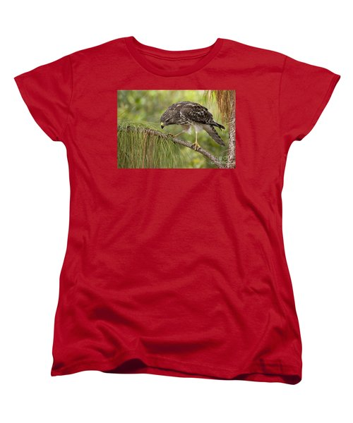 Red Shouldered Hawk Photo Women's T-Shirt (Standard Cut) by Meg Rousher