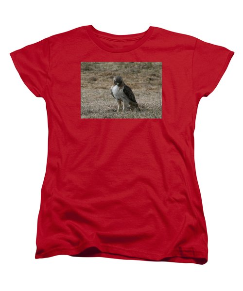 Red Tailed Hawk Women's T-Shirt (Standard Cut) by Neal Eslinger