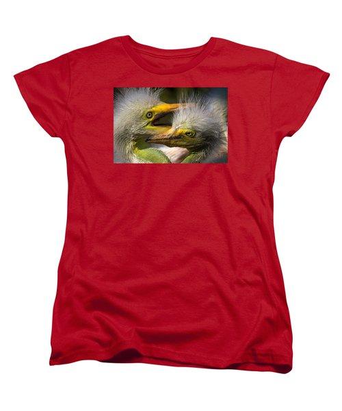 Rookery 7 Women's T-Shirt (Standard Cut) by David Beebe