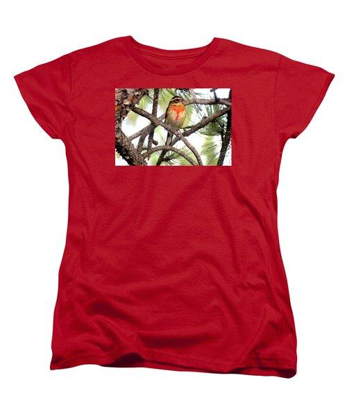 Rose-breasted Grosbeak Women's T-Shirt (Standard Cut) by Marilyn Burton