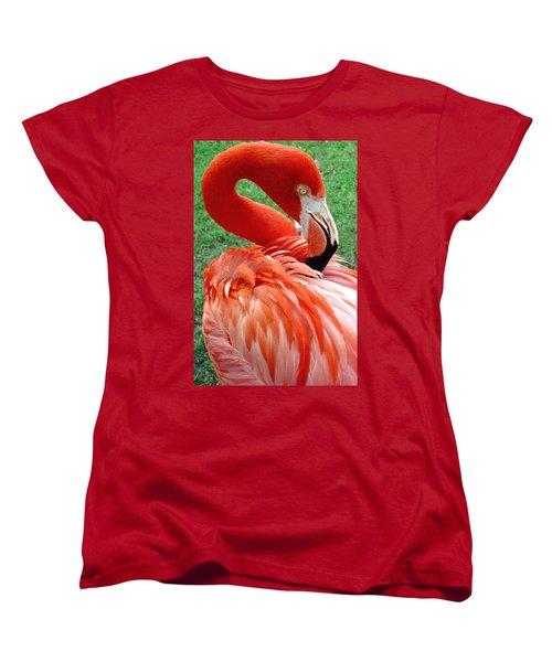 Portrait Of A Scarlet Flamingo Women's T-Shirt (Standard Cut) by Venetia Featherstone-Witty