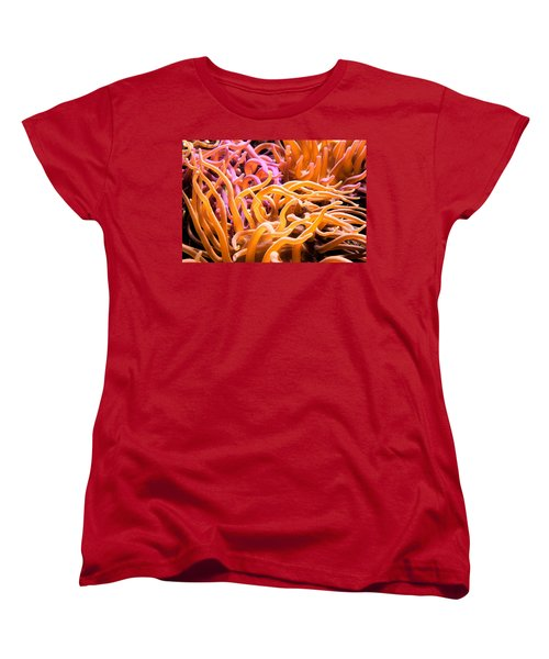 Sea Anemone  Women's T-Shirt (Standard Cut) by Swank Photography