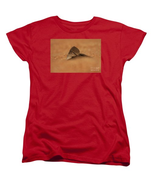 Women's T-Shirt (Standard Cut) featuring the photograph Seashell Solitude by John F Tsumas