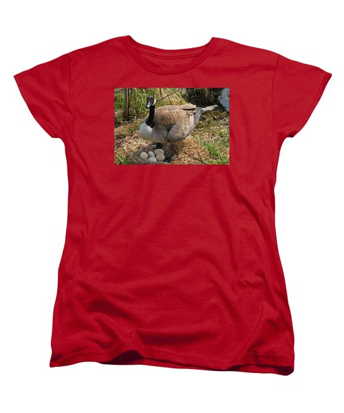 Women's T-Shirt (Standard Cut) featuring the photograph See My Eggs by Elizabeth Winter