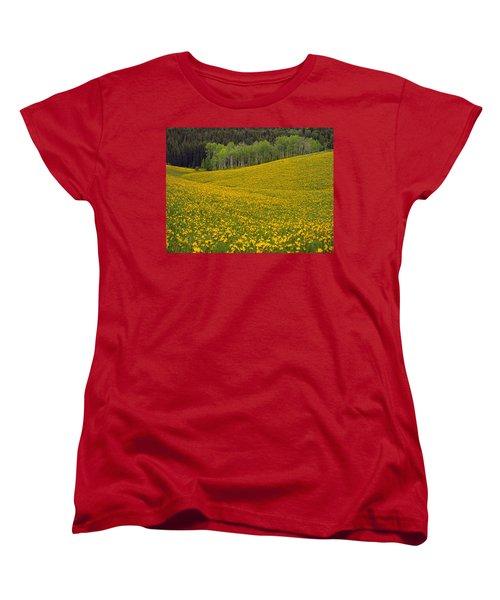 Spring Meadow Women's T-Shirt (Standard Cut) by Leland D Howard