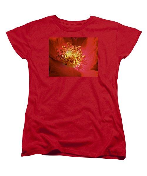 Striking It Rich Women's T-Shirt (Standard Cut) by Richard Cummings