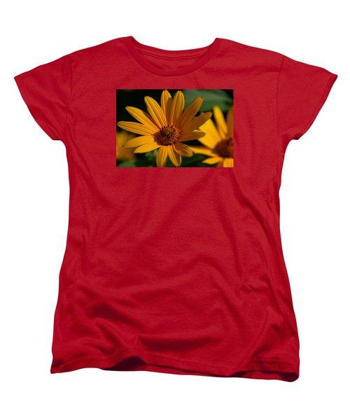 Summer Delight Women's T-Shirt (Standard Cut) by Denyse Duhaime