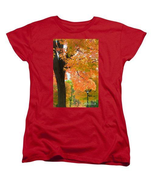 Sunny Fall Day By David Lawrence Women's T-Shirt (Standard Cut) by David Perry Lawrence