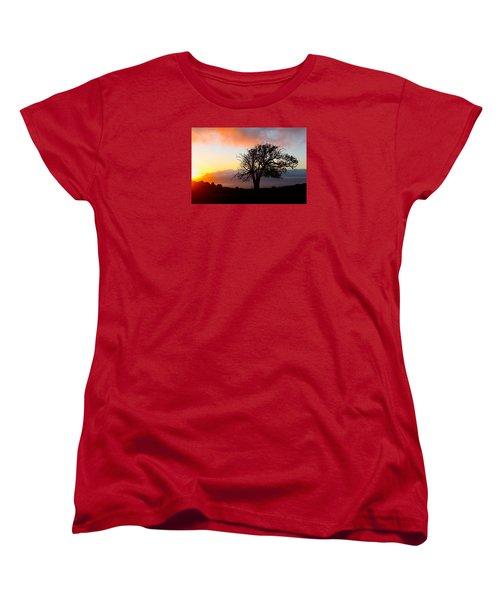 Sunset Tree In Maui Women's T-Shirt (Standard Cut) by Venetia Featherstone-Witty