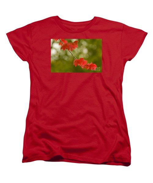 The Essence Of Autumn Women's T-Shirt (Standard Cut) by Nick  Boren