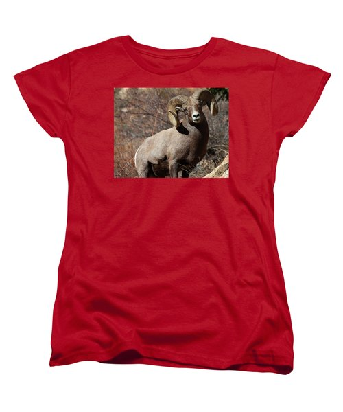 The High And Mighty Women's T-Shirt (Standard Cut) by Jim Garrison