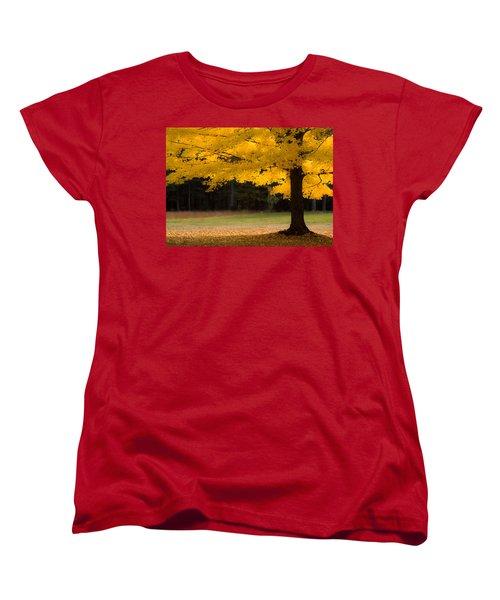 Tree Canopy Glowing In The Morning Sun Women's T-Shirt (Standard Cut) by Jeff Folger