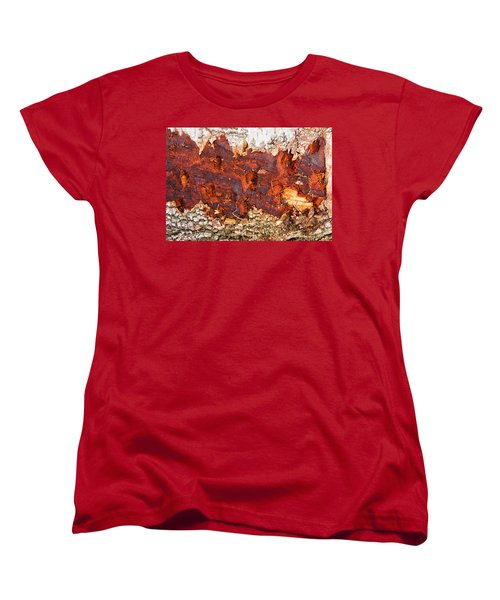 Tree Closeup - Wood Texture Women's T-Shirt (Standard Cut) by Matthias Hauser