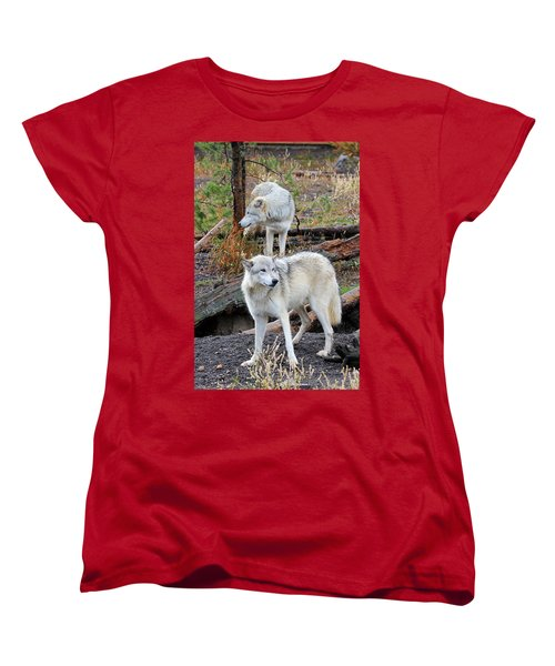 Women's T-Shirt (Standard Cut) featuring the photograph Twin Wolves by Athena Mckinzie