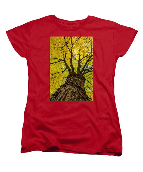 Under The Yellow Canopy Women's T-Shirt (Standard Cut) by Debra Martz