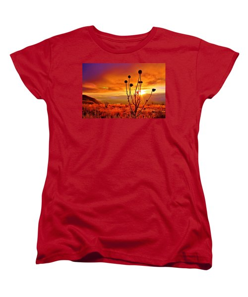 What A Morning Women's T-Shirt (Standard Cut) by Catie Canetti