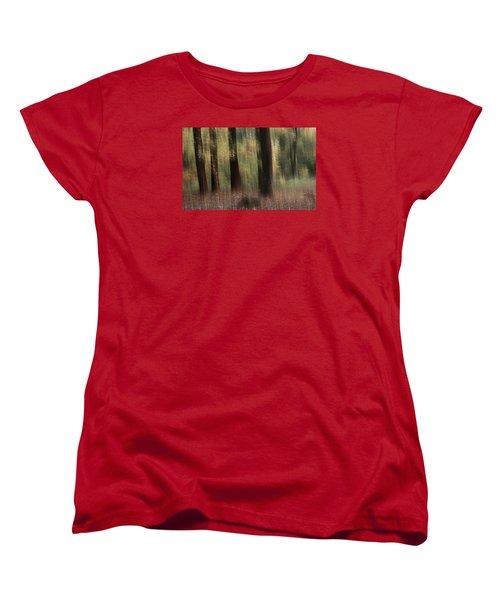 Where Faeries Play Women's T-Shirt (Standard Cut)