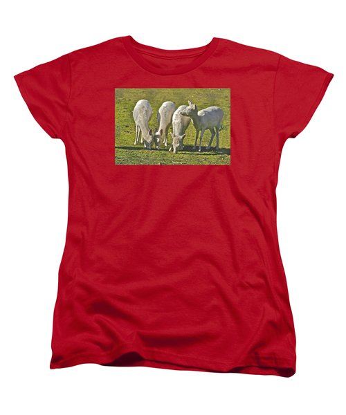 White Fallow Deer Mt Madonna County Park Women's T-Shirt (Standard Cut)