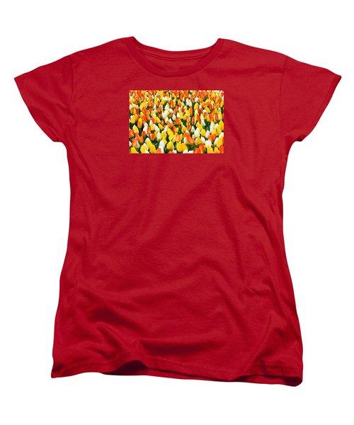 White Orange And Yellow Tulips Women's T-Shirt (Standard Cut) by Menachem Ganon