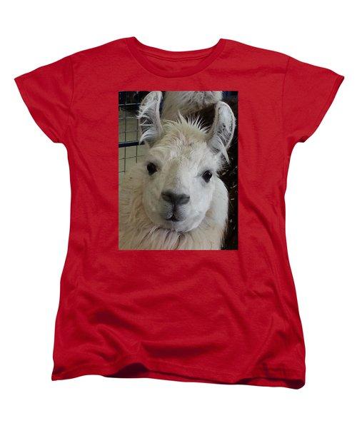 Women's T-Shirt (Standard Cut) featuring the photograph Who Me Llama by Caryl J Bohn